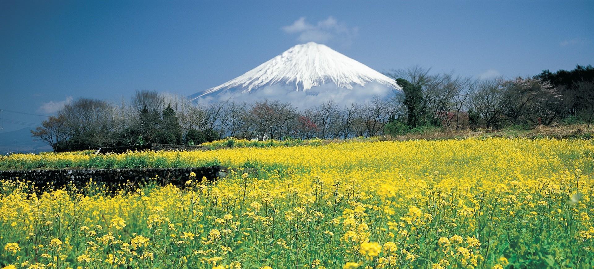 Japon Mont Fuji Yama