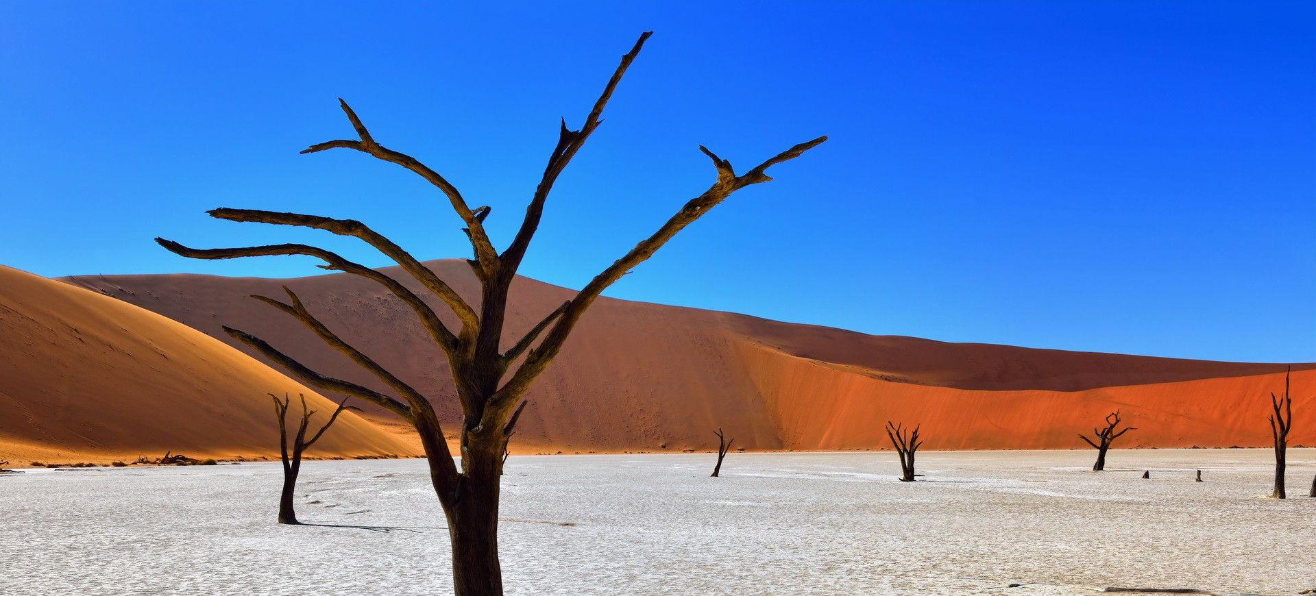 Waterberg, Etosha et Namib