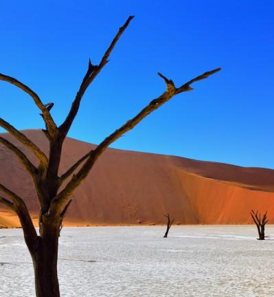 Namibie Dunes, Montagnes et Savane