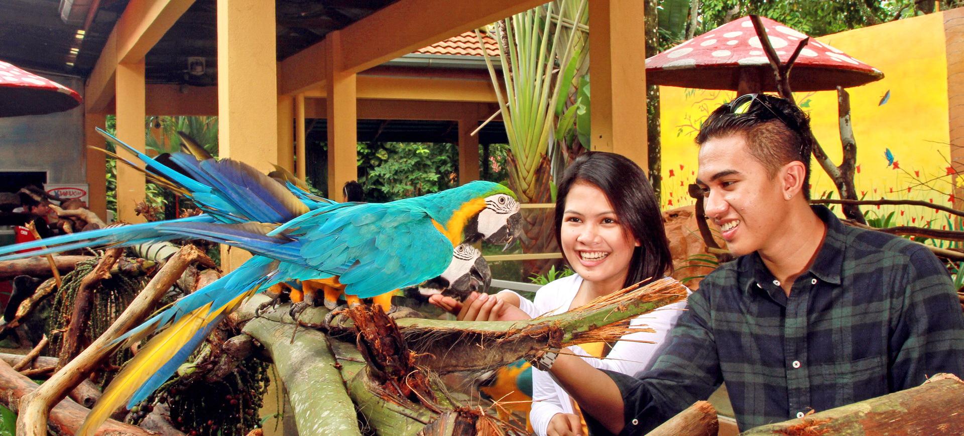 Conseils pratiques Malaisie et Bornéo
