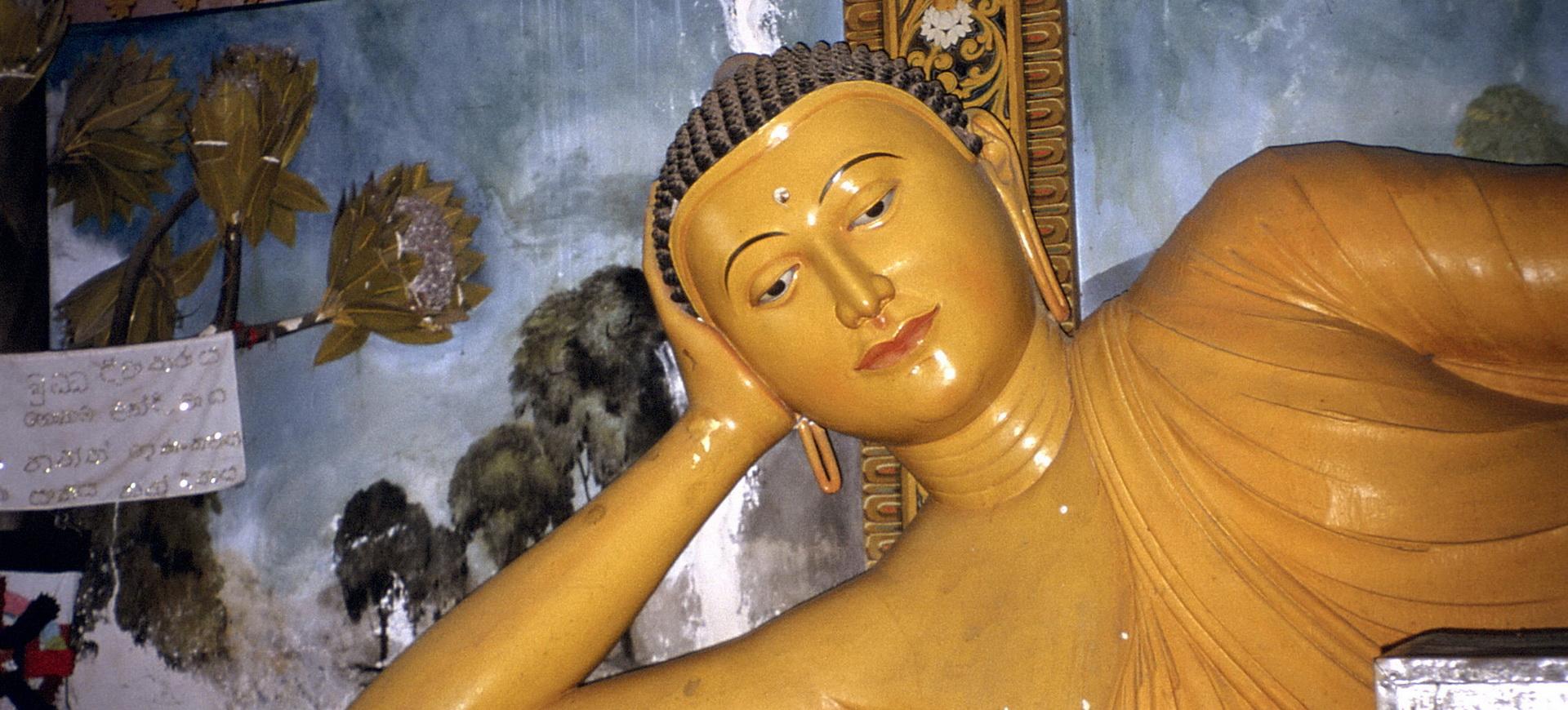 Conseils pratiques pour un voyage au Sri Lanka