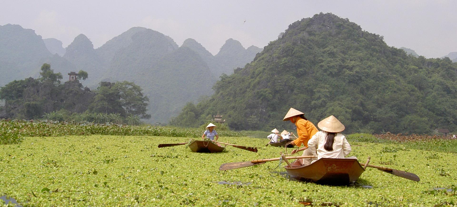 Conseils pratiques Vietnam